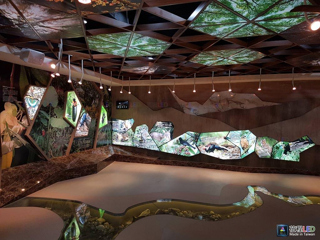 LED燈箱,玉山國家公園管理處-南安遊客中心,LED布燈箱昆蟲區、動物區與天花板區,施工前照